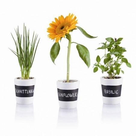 3 Pots à herbes