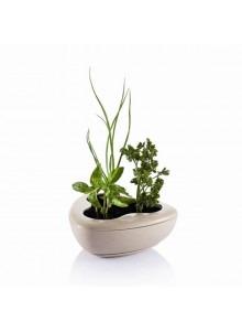 objet publicitaire - promenoch - Pot Herbes Aromatiques  - Jardin & Jardinage