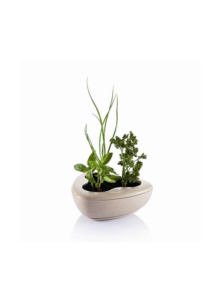 Pot Herbes Aromatiques  publicitaire