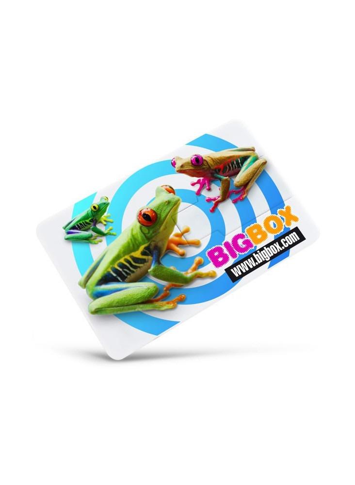 Clé USB Carte Crédit  publicitaire