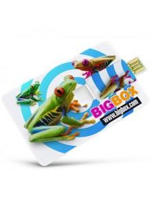 objet publicitaire - promenoch - Clé USB Carte Crédit  - Clés USB Publicitaire