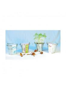 objet publicitaire - promenoch - Kit de Plantation Pot Zinc personnalisable  - Plantes Personnalisés