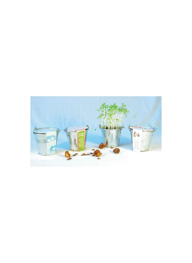 Kit de Plantation Pot Zinc  publicitaire