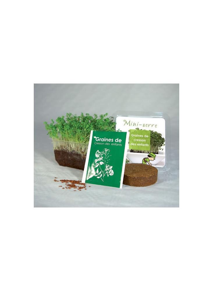 Kit de Plantation  publicitaire