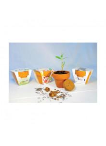 objet publicitaire - promenoch - Kit de Plantation Publicitaire  - Plantes Personnalisés
