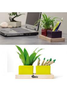 """objet publicitaire - promenoch - Plateau """"Bureau vert""""  - Plantes Personnalisés"""