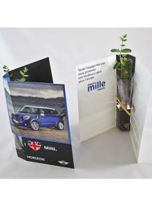 objet publicitaire - promenoch - Canne chinois en plante postale publicitaire  - Plantes Personnalisés