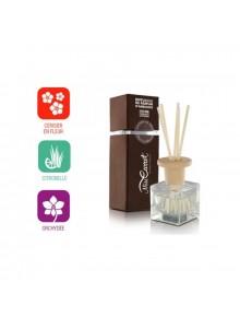 objet publicitaire - promenoch - Diffuseur de parfum d'ambiance  - Accueil