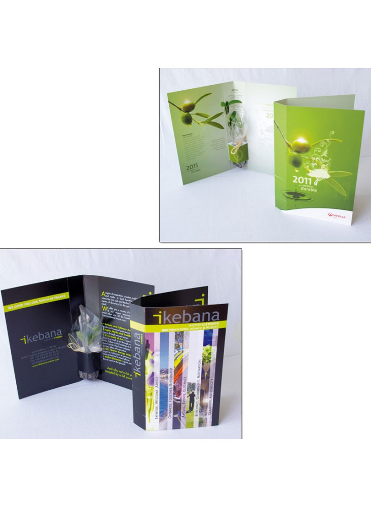 La Plante postale personnalisée  publicitaire