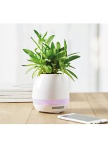 objet publicitaire - promenoch - Pot de fleur magique publicitaire  - Accueil